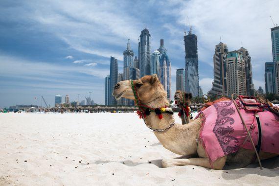 Dubai repülőjegyek üzlet utazás gazdagság szuper teve