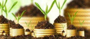 gazdagok-milliomosok-befeketési-területei-startup
